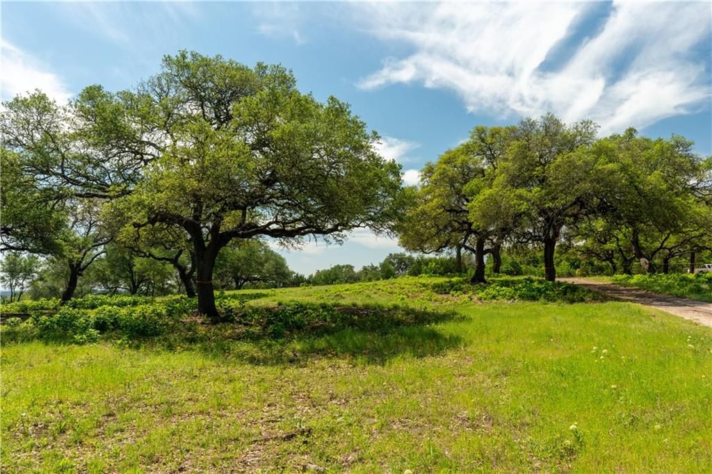 Ranch #14 Liberty Ranch RD, Buda TX 78610 Property Photo - Buda, TX real estate listing