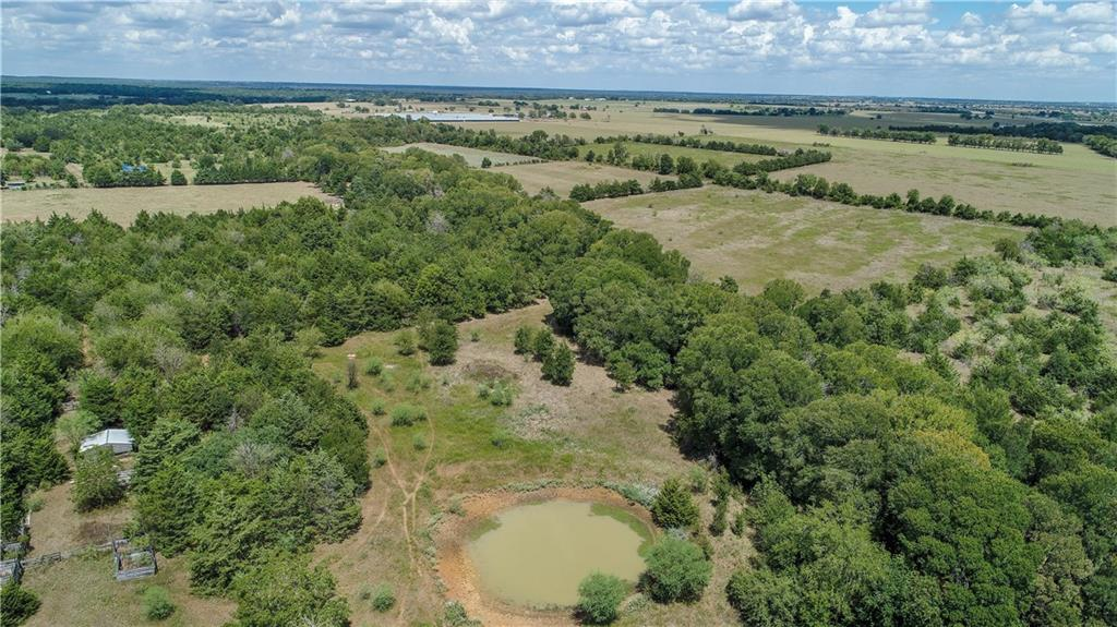 TBD CR 114 (39.62 acres) Property Photo - Caldwell, TX real estate listing