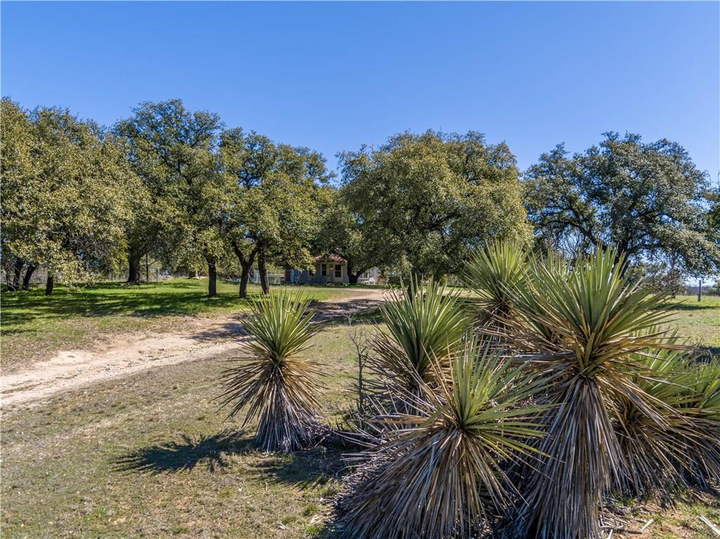 1251 County Road 360 Property Photo - Comanche, TX real estate listing