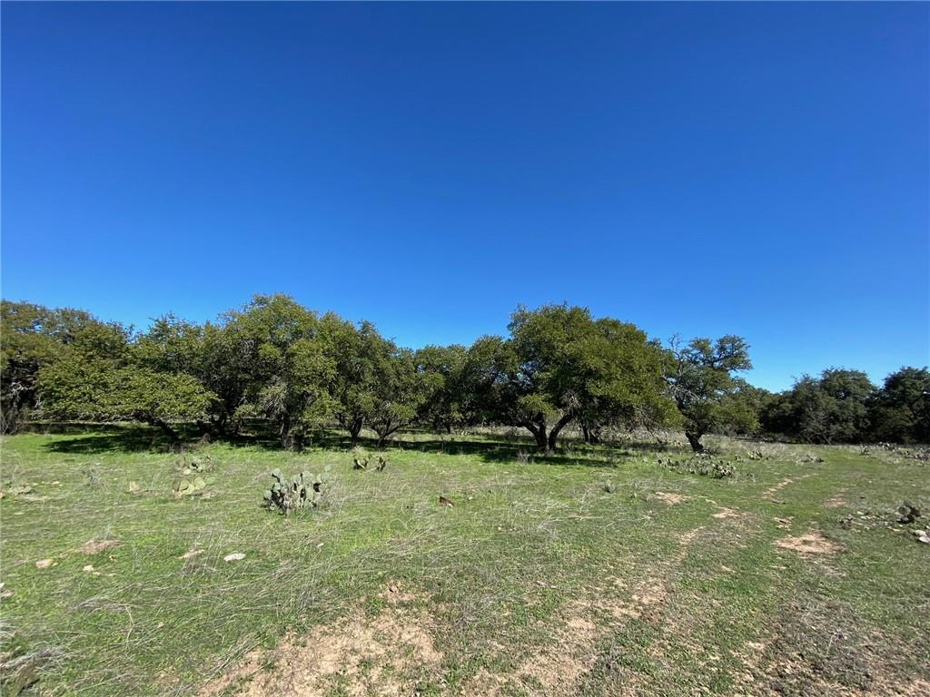 TBD N US 281 Property Photo - Round Mountain, TX real estate listing