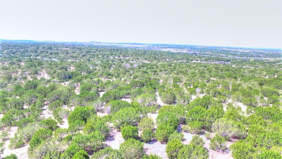 2W Tract 4 County Road 2200 Property Photo - Lometa, TX real estate listing