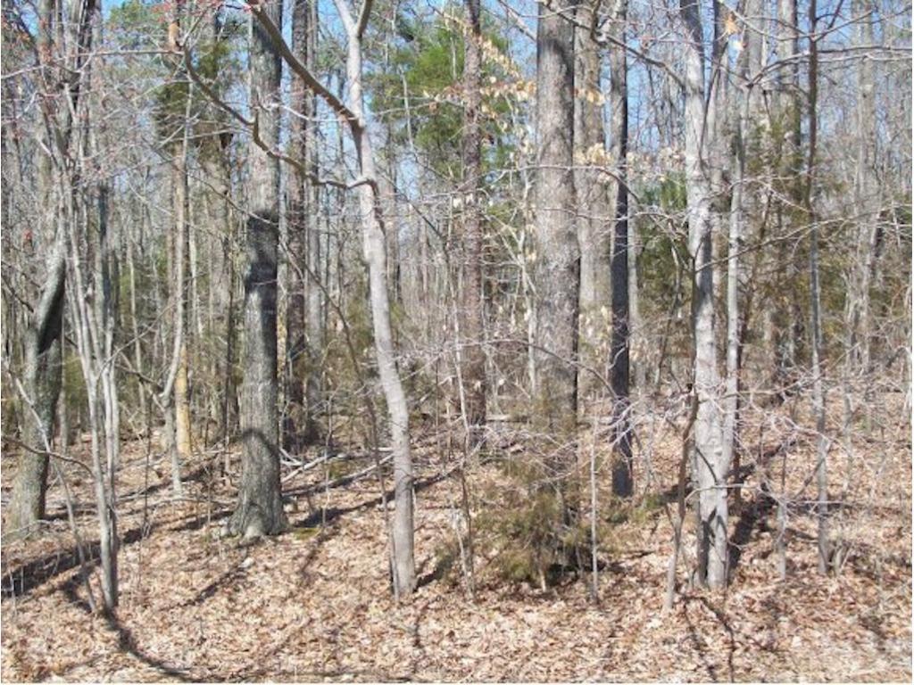 Lot 58 Iron Wood Drive Property Photo