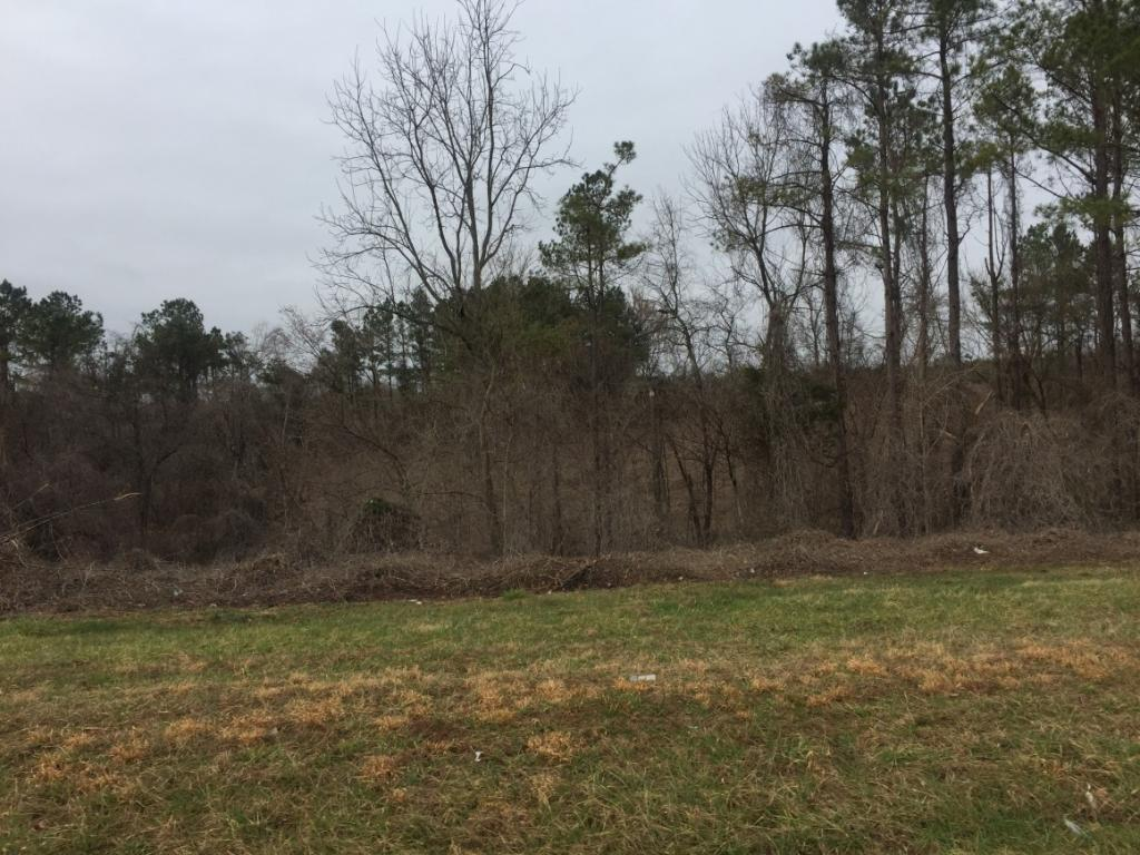 1430 N Jim Minor Road Property Photo - Haw River, NC real estate listing