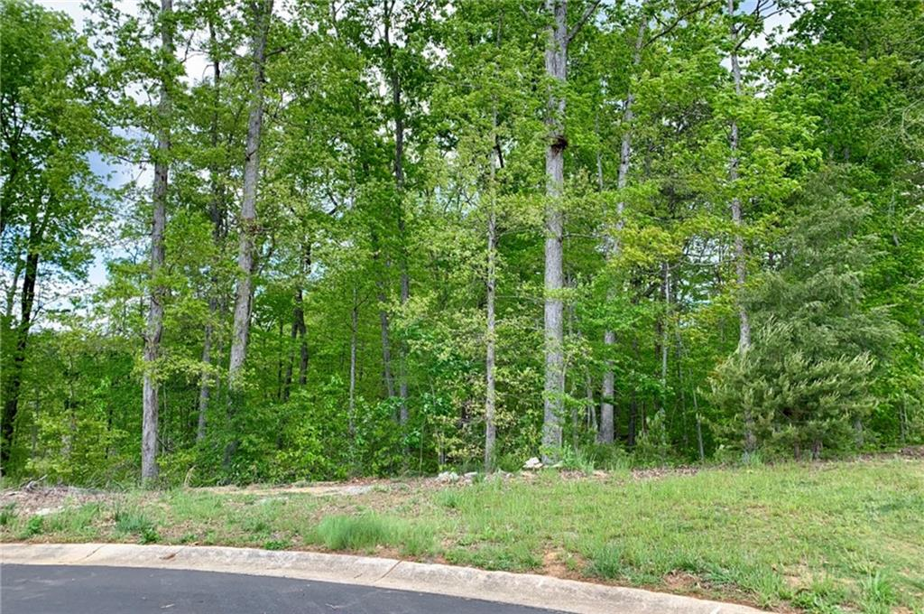 Ashley Woods Real Estate Listings Main Image