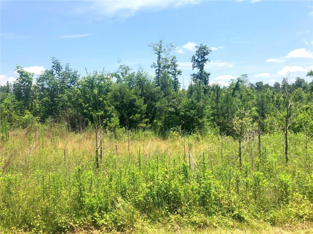 0 Reno Sharps Store Road Property Photo - Bear Creek, NC real estate listing