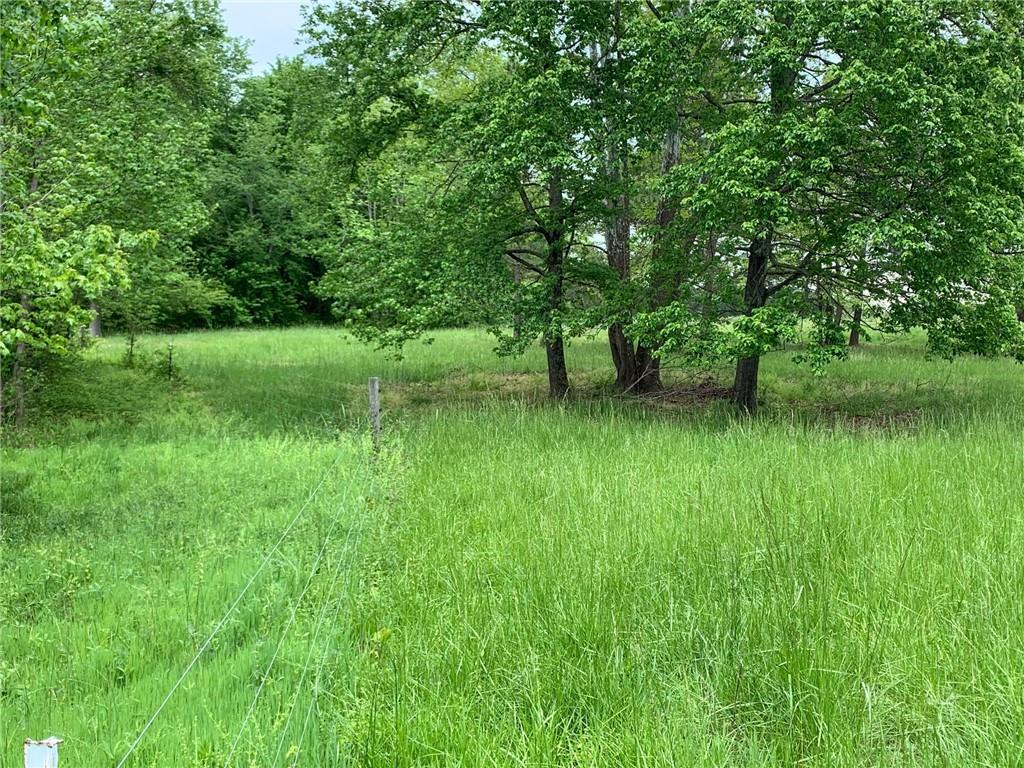 Lot 1 County Home Road Property Photo - Blanch, NC real estate listing