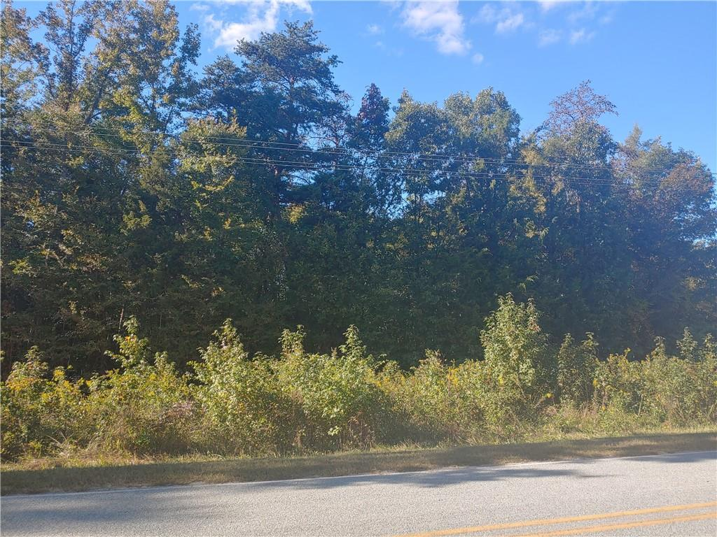 0 Roxboro Lake Road Property Photo - Leasburg, NC real estate listing