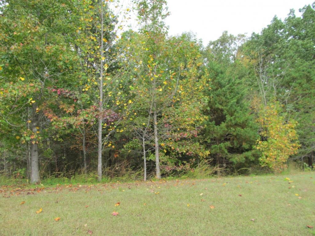 00 Lake Pointe Dr Lot 11 Property Photo - Yanceyville, NC real estate listing
