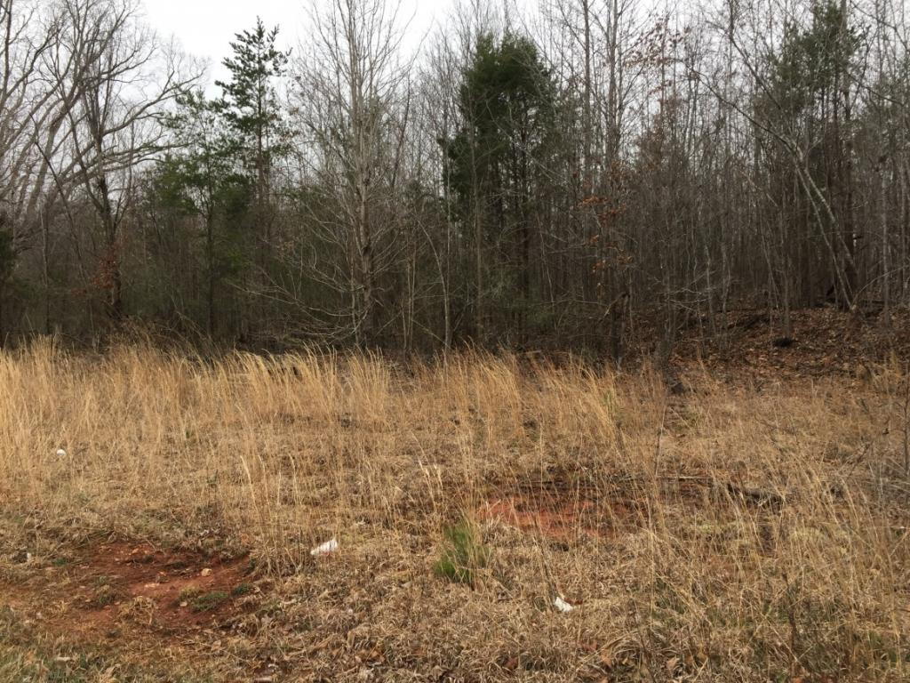 1220 Springwood Church Road, Gibsonville, NC 27249 - Gibsonville, NC real estate listing