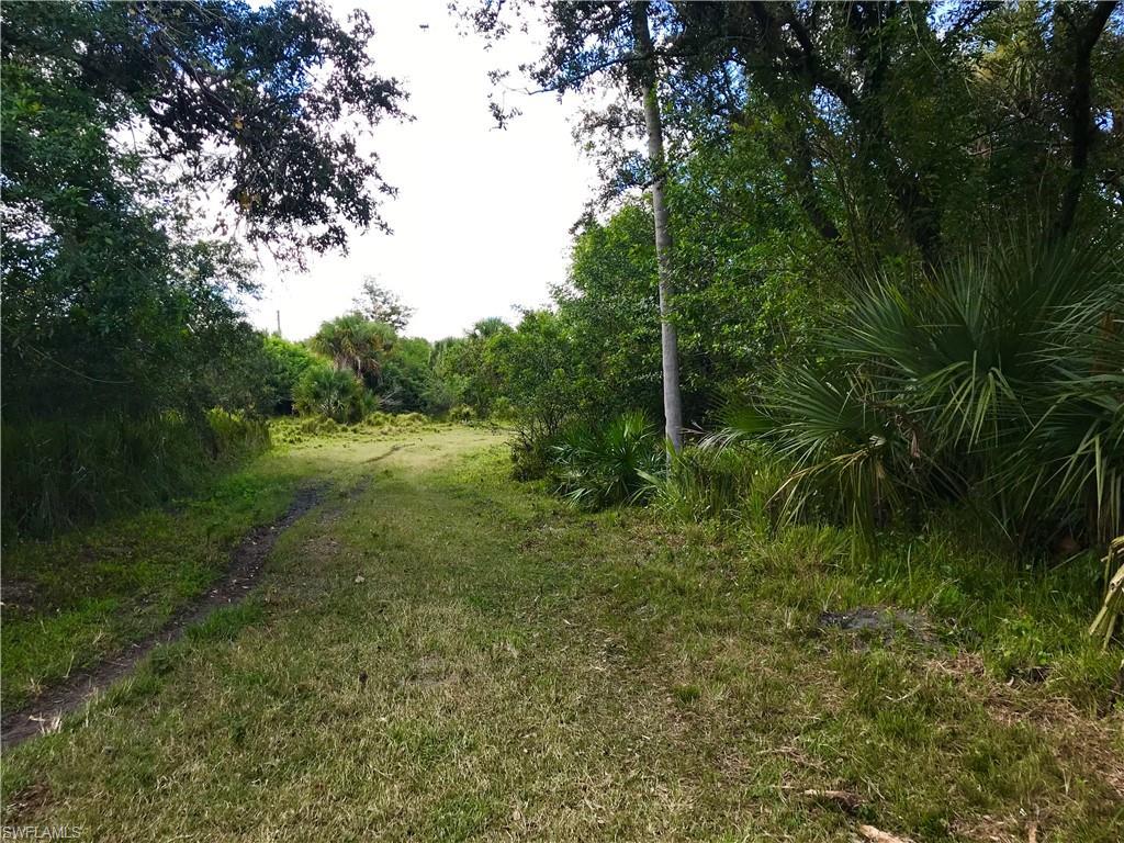 23590 Palm Beach Boulevard Property Photo - ALVA, FL real estate listing