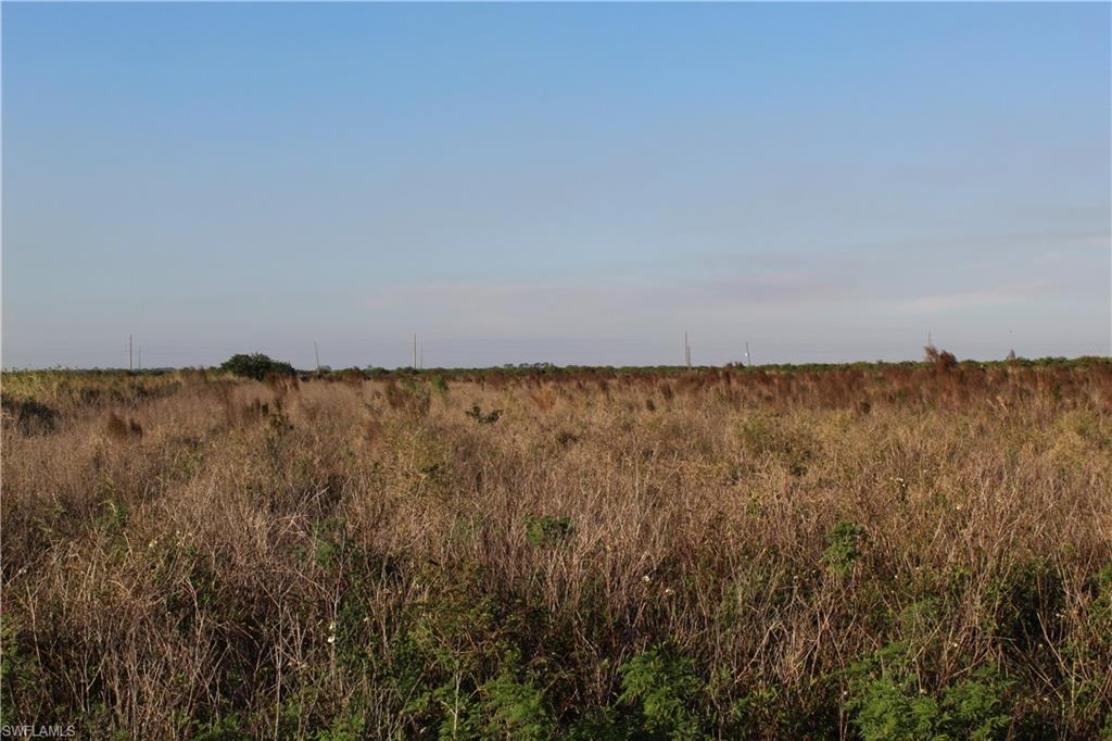 Sears Road Property Photo - LABELLE, FL real estate listing