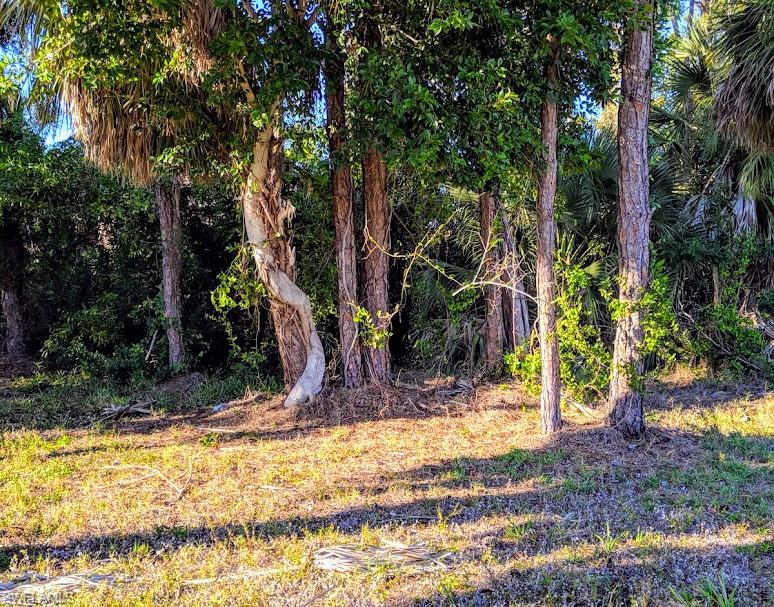 682 6th Avenue Property Photo - MARCO ISLAND, FL real estate listing