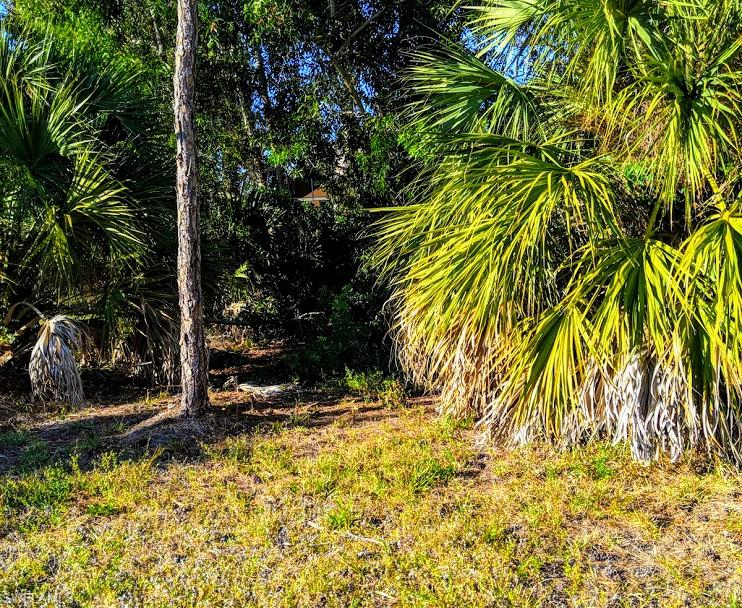 674 6th Avenue Property Photo - MARCO ISLAND, FL real estate listing