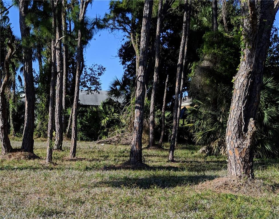 666 6th Avenue Property Photo - MARCO ISLAND, FL real estate listing