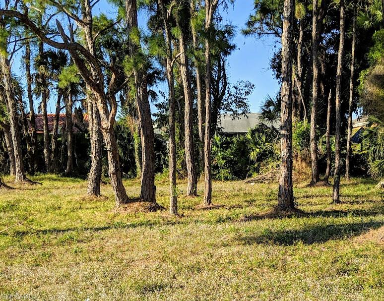 658 6th Avenue Property Photo - MARCO ISLAND, FL real estate listing