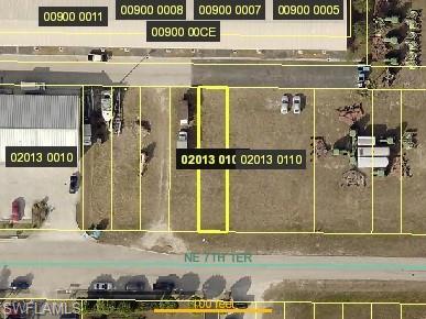 1021 NE 7th Terrace Property Photo - CAPE CORAL, FL real estate listing