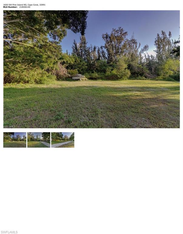 1830 W Pine Island Road Property Photo - CAPE CORAL, FL real estate listing