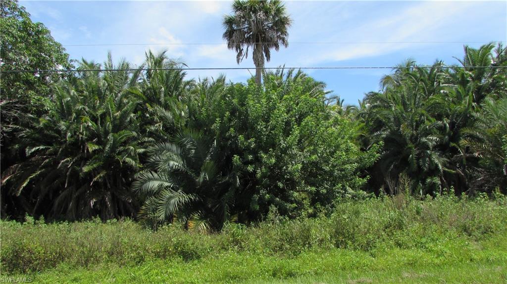 7211 Pineland Road Property Photo