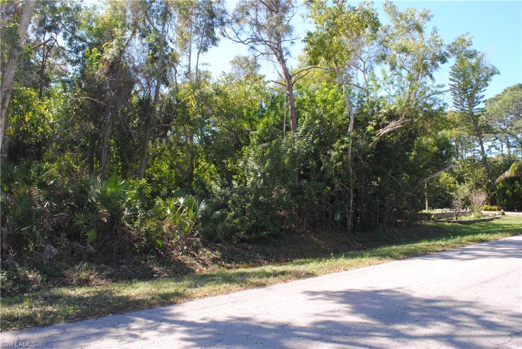 3821 Citrus Street Property Photo