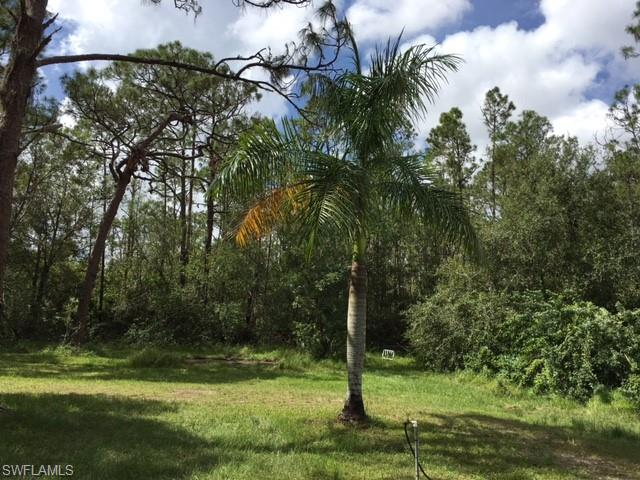 10741 Brahma Road Property Photo - FORT MYERS, FL real estate listing