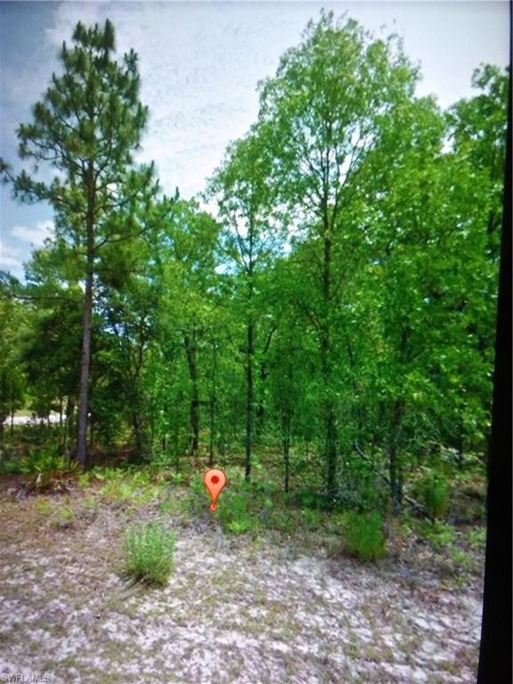 7457 N June Terrace Property Photo - CITRUS SPRINGS, FL real estate listing