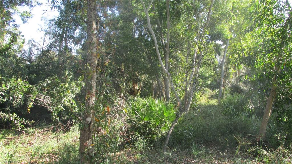 10670 Russell Road Property Photo
