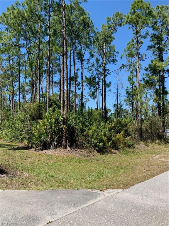 2345 19th Street SW Property Photo - NAPLES, FL real estate listing