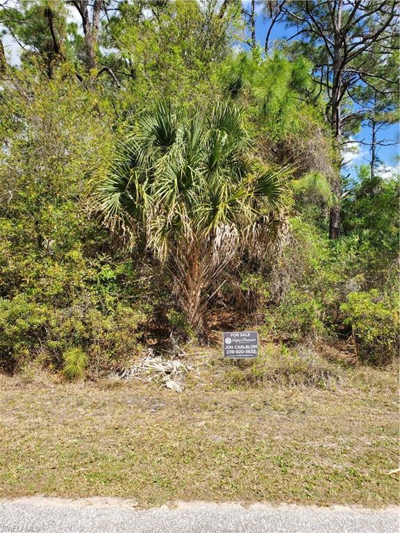 Bellefonte Avenue Property Photo - NORTH PORT, FL real estate listing