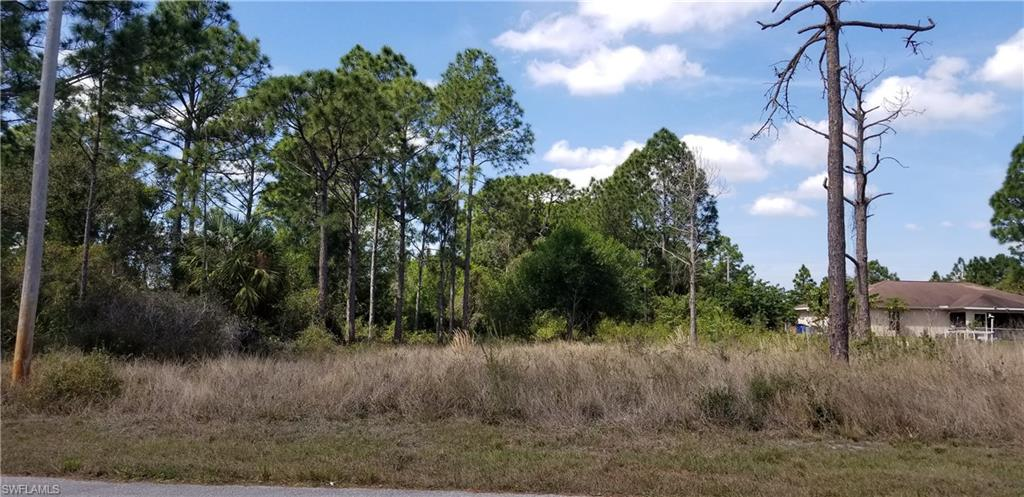 328 Lillon Avenue S Property Photo - LEE, FL real estate listing