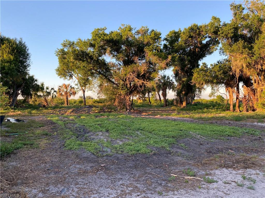 Off Collins Slough Road Property Photo - OTHER, FL real estate listing