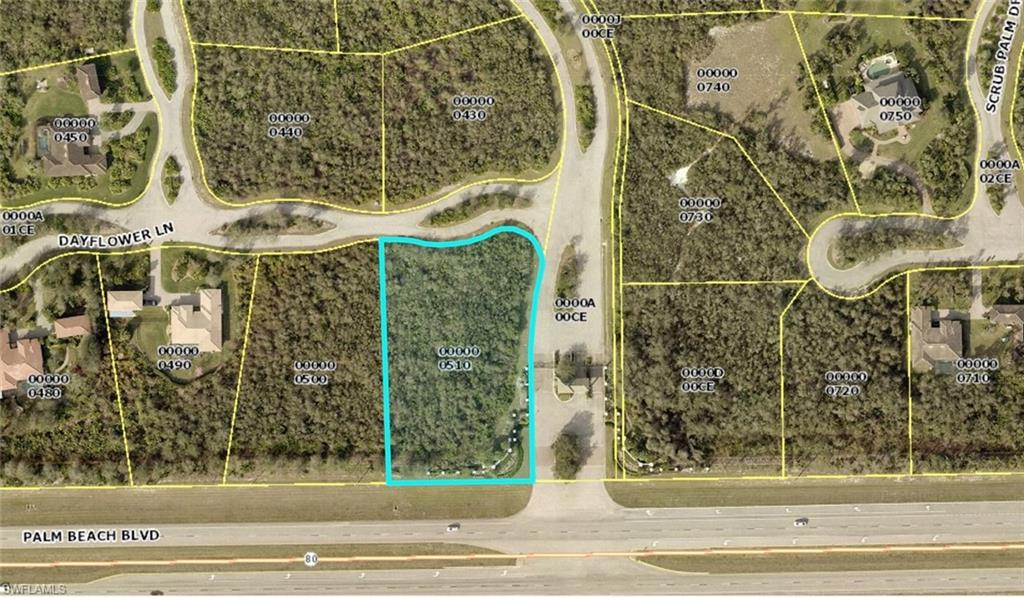 22948 Dayflower Lane Property Photo - ALVA, FL real estate listing