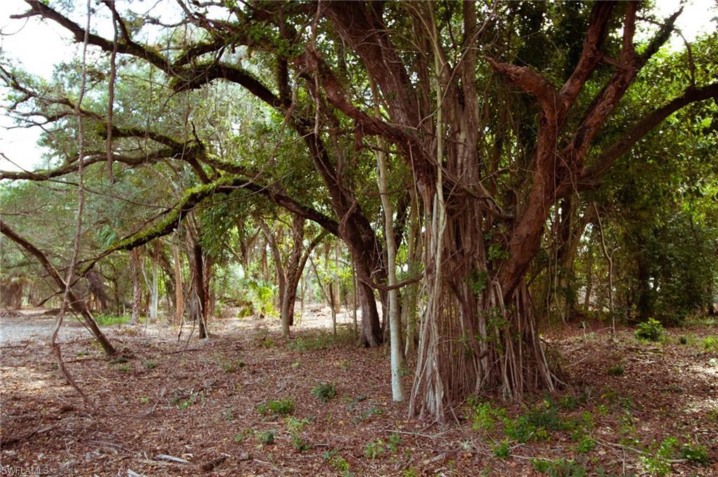 10751 Orange River Boulevard Property Photo - FORT MYERS, FL real estate listing