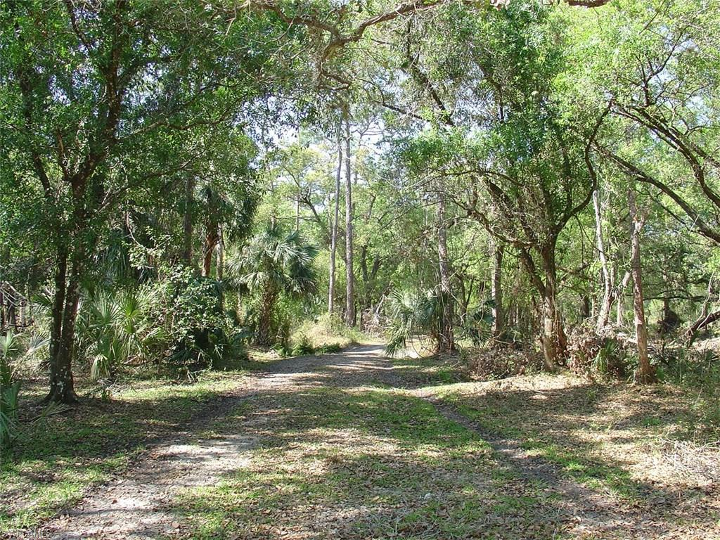 975 Silver Lake Road Property Photo - LABELLE, FL real estate listing