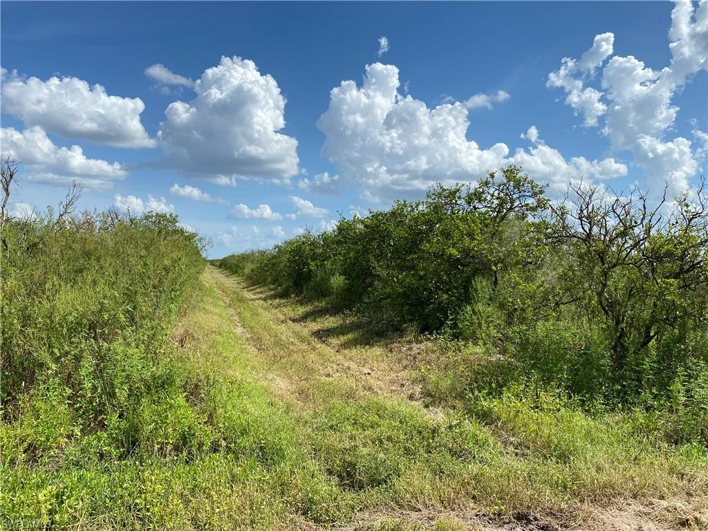 1st Road Property Photo - LABELLE, FL real estate listing