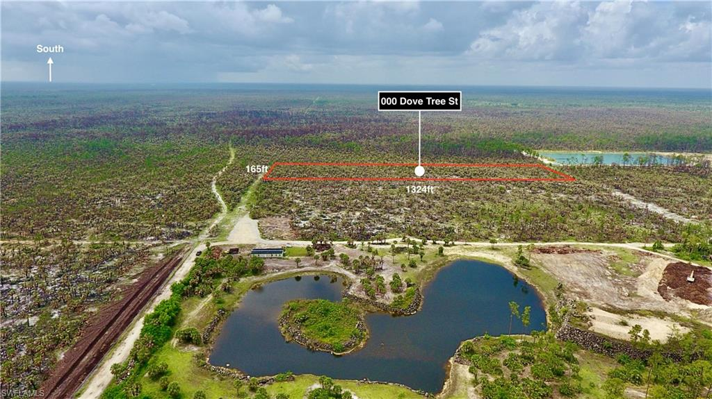 000 Dove Tree Street Property Photo - NAPLES, FL real estate listing