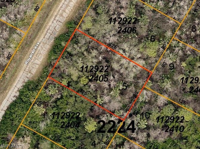 Royalred Avenue Property Photo - NORTH PORT, FL real estate listing
