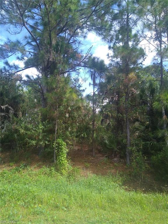 Hempstead Avenue Property Photo - NORTH PORT, FL real estate listing
