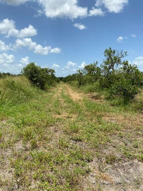 6th (Sears Rd. in records) Road Property Photo - LABELLE, FL real estate listing
