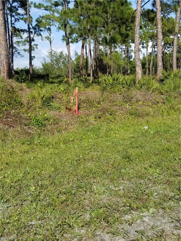 4480 Turtle Trail Lane Property Photo - OTHER, FL real estate listing