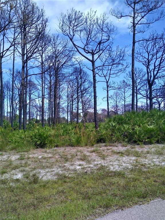 3 Bill Court Property Photo - PLACIDA, FL real estate listing