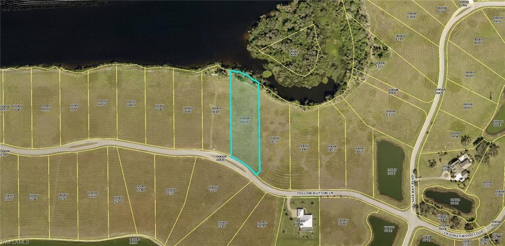 22833 Yellow Button Lane Property Photo - ALVA, FL real estate listing