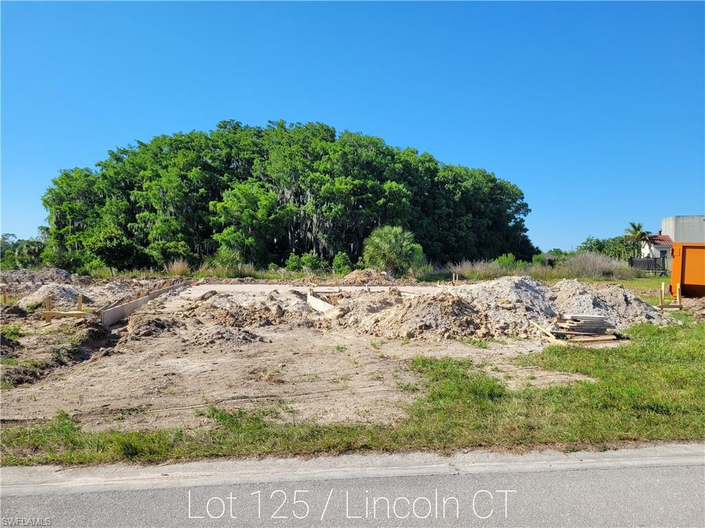 1367 Lincoln Court Property Photo