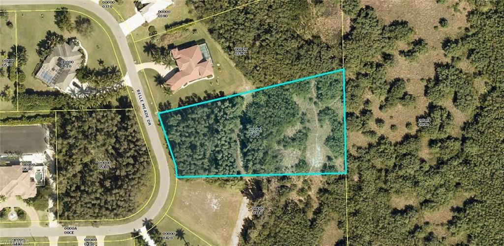8500 Belle Meade Drive Property Photo - FORT MYERS, FL real estate listing