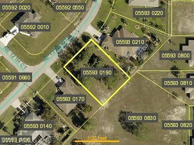 3513 NE 13th Avenue Property Photo - CAPE CORAL, FL real estate listing