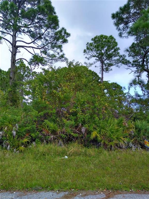 3302 El Salvador Road Property Photo