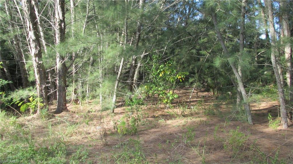 14074 Pacosin Court Property Photo - BOKEELIA, FL real estate listing
