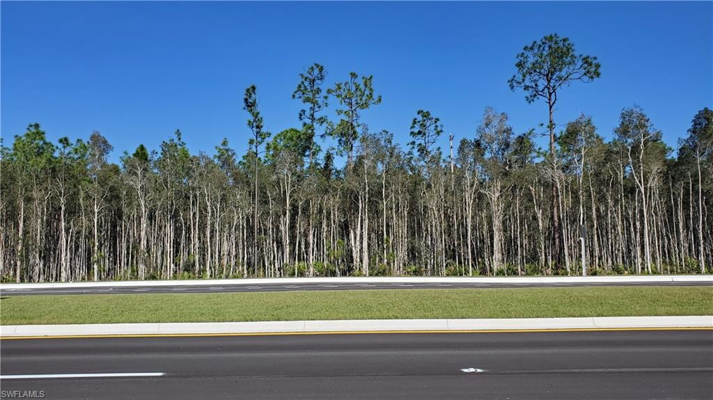 Jacksonville @ Hanson Street Property Photo - FORT MYERS, FL real estate listing