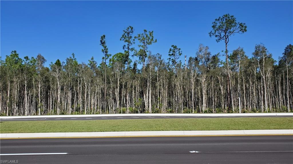 Jacksonville @ Hanson Street Property Photo