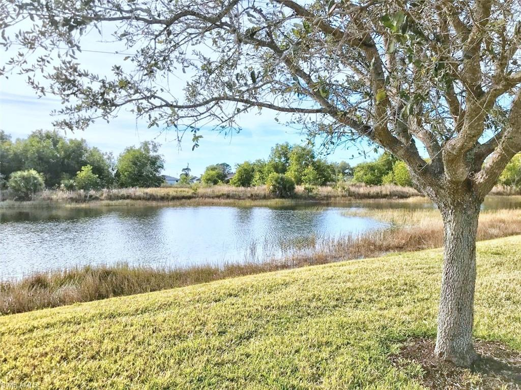 2666 Blue Cypress Lake Court Property Photo - CAPE CORAL, FL real estate listing