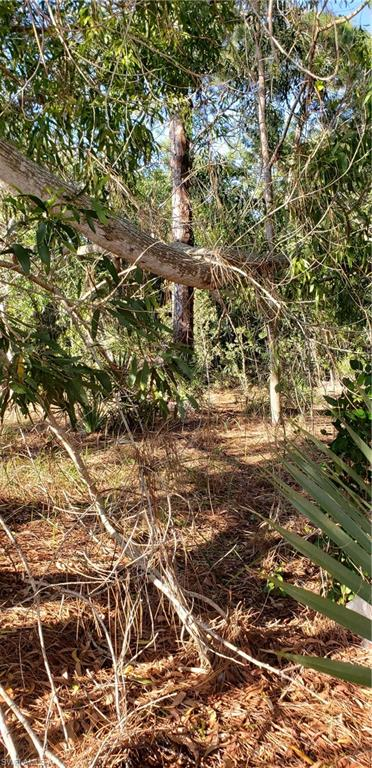 5500 Stringfellow Road Property Photo - OTHER, FL real estate listing